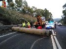 https://www.ragusanews.com//immagini_articoli/29-01-2020/tir-perde-enorme-tubo-tragedia-sfiorata-100.jpg