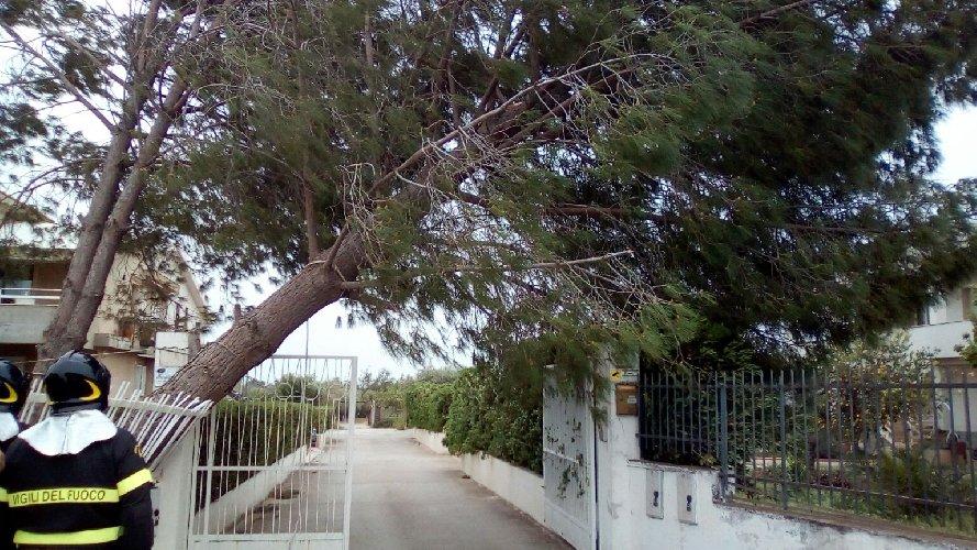 https://www.ragusanews.com//immagini_articoli/29-04-2018/vento-ragusano-500.jpg