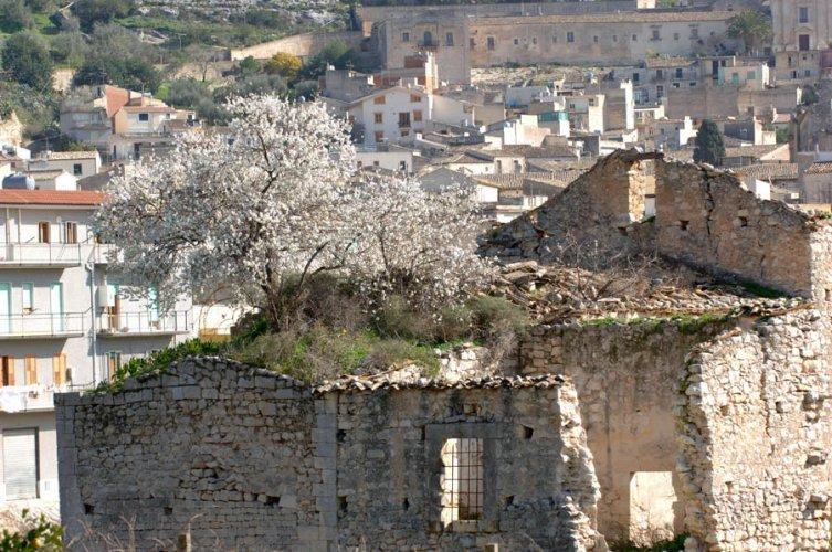 https://www.ragusanews.com//immagini_articoli/29-05-2019/il-convento-di-sant-antonino-e-il-pio-arzigogolare-di-carioti-500.jpg