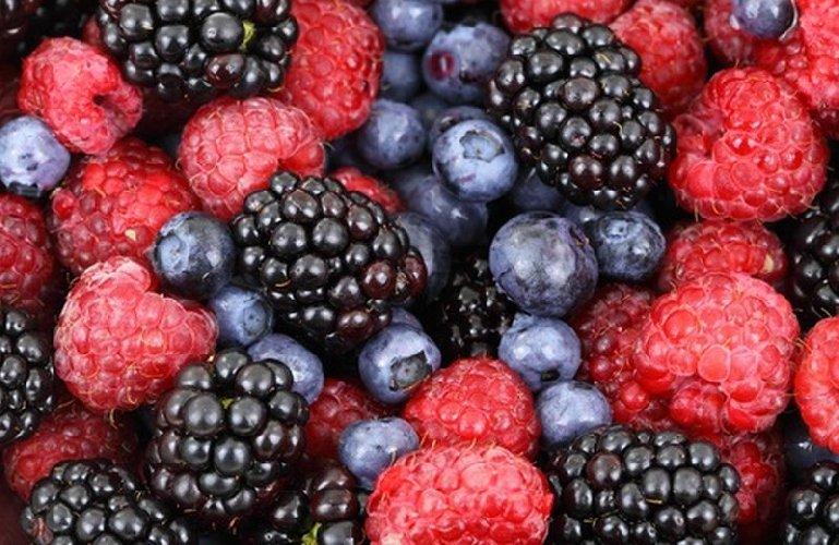 https://www.ragusanews.com//immagini_articoli/29-06-2019/dieta-antinfiammatoria-ridurre-l-infiammazione-grazie-all-alimentazione-500.jpg