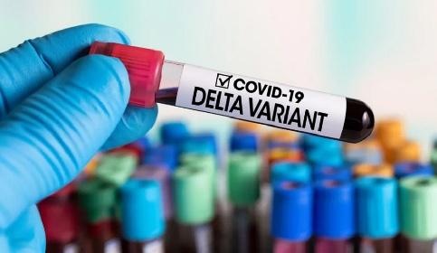 https://www.ragusanews.com//immagini_articoli/29-06-2021/covid-30-casi-di-variante-delta-in-sicilia-280.jpg