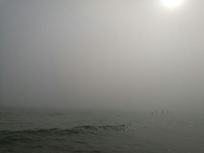 https://www.ragusanews.com//immagini_articoli/29-07-2017/arrivata-lupa-nebbia-spiaggia-iblei-video-500.jpg