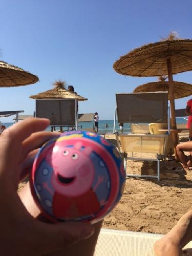 http://www.ragusanews.com//immagini_articoli/29-08-2017/palla-peppa-divieti-sceriffi-marina-modica-500.jpg