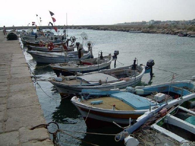 https://www.ragusanews.com//immagini_articoli/29-08-2019/gommoni-e-barche-abusive-al-porto-di-donnalucata-500.jpg