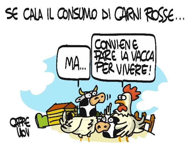 https://www.ragusanews.com//immagini_articoli/29-10-2015/carni-rosse-la-conversione-dei-polli-500.jpg