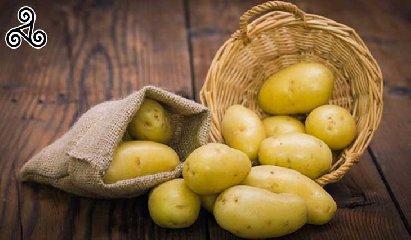 https://www.ragusanews.com//immagini_articoli/29-11-2018/patata-novella-siracusa-presto-240.jpg
