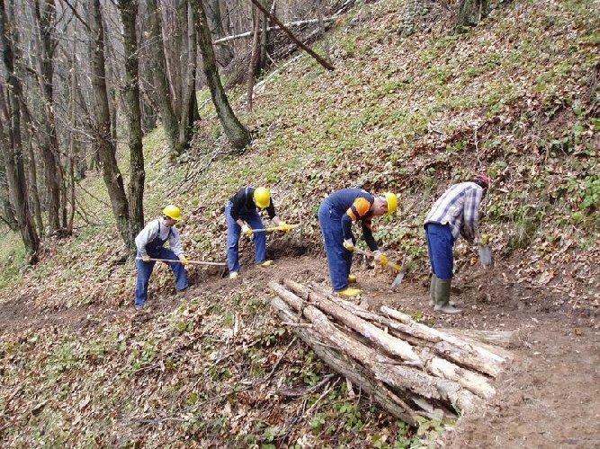 http://www.ragusanews.com//immagini_articoli/29-12-2017/regione-risposte-forestali-comunali-precari-ispica-500.jpg