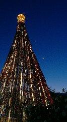https://www.ragusanews.com//immagini_articoli/29-12-2019/1577574931-ecco-l-albero-di-natale-fatto-da-7-mila-tappi-di-plastica-foto-1-240.jpg