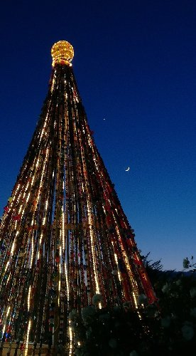 https://www.ragusanews.com//immagini_articoli/29-12-2019/1577574931-ecco-l-albero-di-natale-fatto-da-7-mila-tappi-di-plastica-foto-1-500.jpg