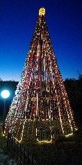 https://www.ragusanews.com//immagini_articoli/29-12-2019/1577574931-ecco-l-albero-di-natale-fatto-da-7-mila-tappi-di-plastica-foto-3-240.jpg