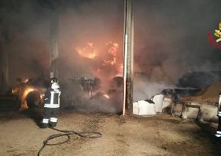 http://www.ragusanews.com//immagini_articoli/30-03-2017/acate-fuoco-capannone-azienda-agricola-220.jpg