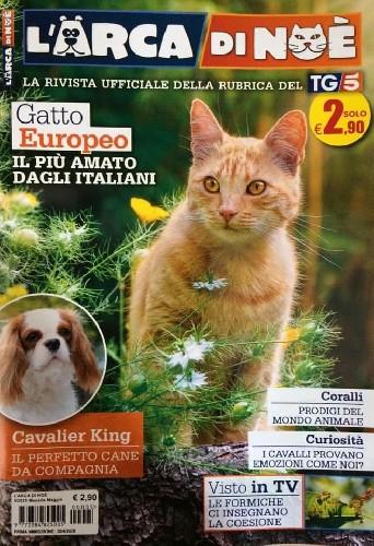 https://www.ragusanews.com//immagini_articoli/30-04-2020/la-storia-del-cane-italo-su-l-arca-di-noe-500.jpg