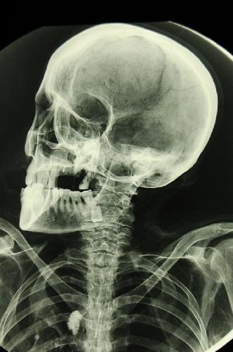 http://www.ragusanews.com//immagini_articoli/30-05-2017/hanno-fatto-regina-regina-mori-mummia-500.jpg