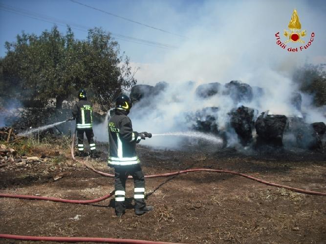 http://www.ragusanews.com//immagini_articoli/30-05-2017/ispica-fuoco-cento-rotaballe-unazienda-agricola-500.jpg