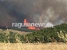 http://www.ragusanews.com//immagini_articoli/30-06-2017/incendio-chiaramonte-nessun-canadair-fiamme-vicino-ferriero-video-100.jpg