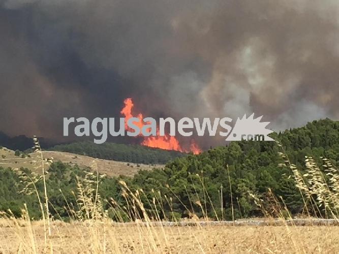 http://www.ragusanews.com//immagini_articoli/30-06-2017/incendio-chiaramonte-nessun-canadair-fiamme-vicino-ferriero-video-500.jpg
