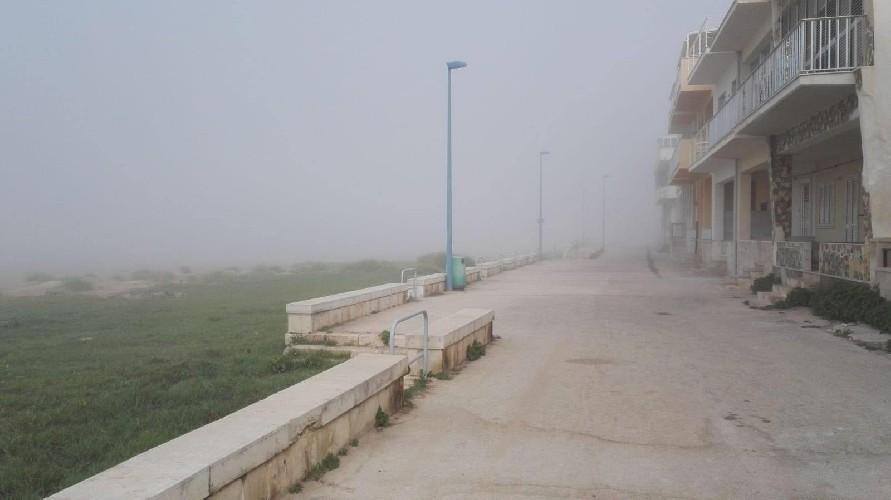 https://www.ragusanews.com//immagini_articoli/30-06-2020/donnalucata-e-marina-di-ragusa-avvolte-dalla-lupa-di-mare-500.jpg