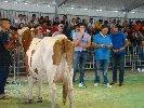 https://www.ragusanews.com//immagini_articoli/30-09-2019/le-scuole-agrarie-fiera-agricola-di-ragusa-100.jpg