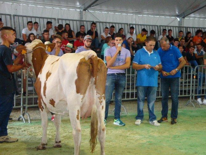 https://www.ragusanews.com//immagini_articoli/30-09-2019/le-scuole-agrarie-fiera-agricola-di-ragusa-500.jpg