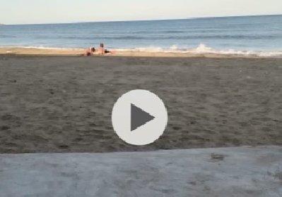 https://www.ragusanews.com//immagini_articoli/30-09-2020/sicilia-fanno-l-amore-in-spiaggia-e-vengono-ripresi-video-sul-web-280.jpg