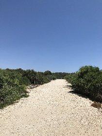 https://www.ragusanews.com//immagini_articoli/30-10-2020/1604089416-i-perorsi-del-trekking-a-scicli-7-280.jpg