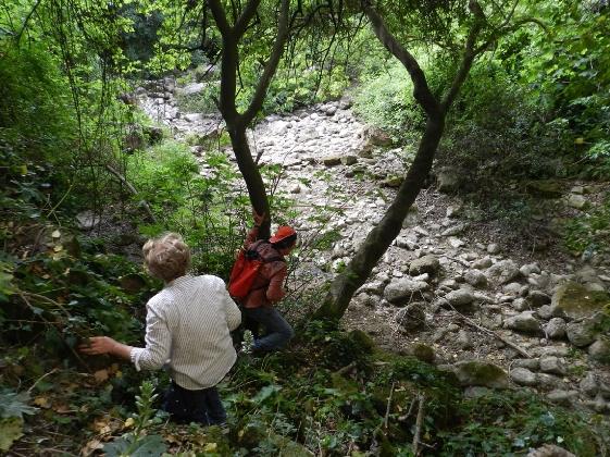 https://www.ragusanews.com//immagini_articoli/30-11-2016/iblee-valley-circuit-arriva-il-turismo-naturalistico-420.jpg