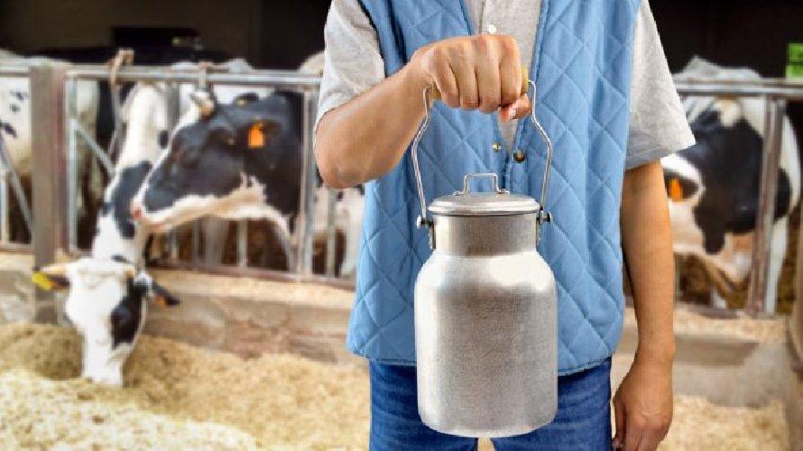 https://www.ragusanews.com//immagini_articoli/30-11-2018/sicurezza-sostenibilita-filiera-lattiero-casearia-ragusa-500.jpg