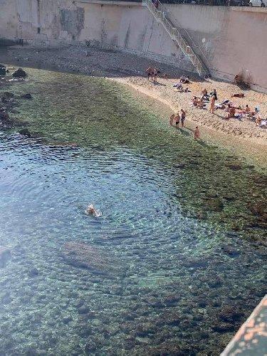 https://www.ragusanews.com//immagini_articoli/30-11-2019/30-novembre-in-ortigia-e-ora-di-fare-il-bagno-a-mare-500.jpg
