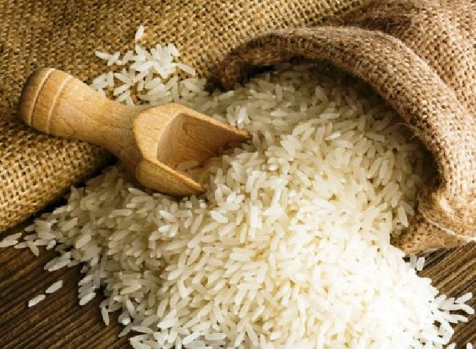 https://www.ragusanews.com//immagini_articoli/30-12-2017/coltivare-riso-sicilia-500.jpg