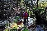 https://www.ragusanews.com//immagini_articoli/30-12-2019/liberi-a-ragusa-libri-ma-anche-escursioni-100.jpg