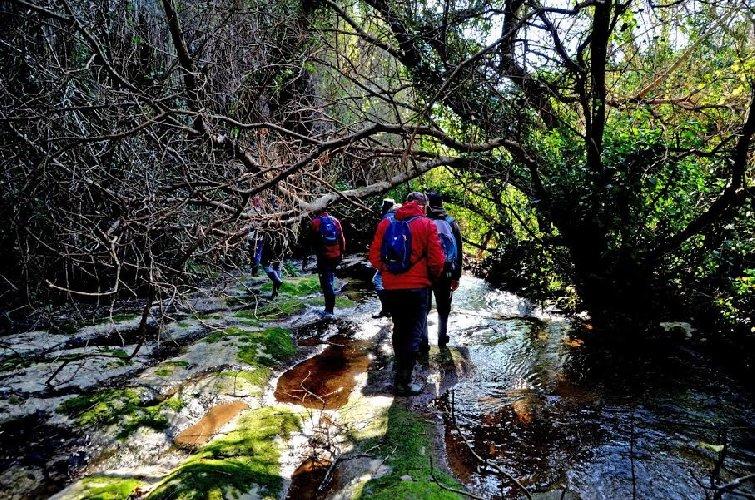 https://www.ragusanews.com//immagini_articoli/30-12-2019/liberi-a-ragusa-libri-ma-anche-escursioni-500.jpg