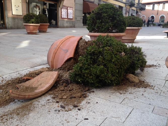 https://www.ragusanews.com//immagini_articoli/31-05-2014/a-ragusa-adotta-un-vaso-500.jpg