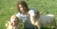 https://www.ragusanews.com//immagini_articoli/31-08-2021/dafni-il-pastore-ragusano-troppo-bello-per-campare-a-lungo-100.jpg