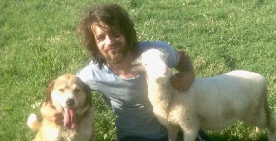 https://www.ragusanews.com//immagini_articoli/31-08-2021/dafni-il-pastore-ragusano-troppo-bello-per-campare-a-lungo-280.jpg