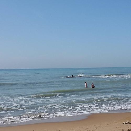 9 gennaio nel mare di montalbano si fa il bagno santa - Dubai a gennaio si fa il bagno ...