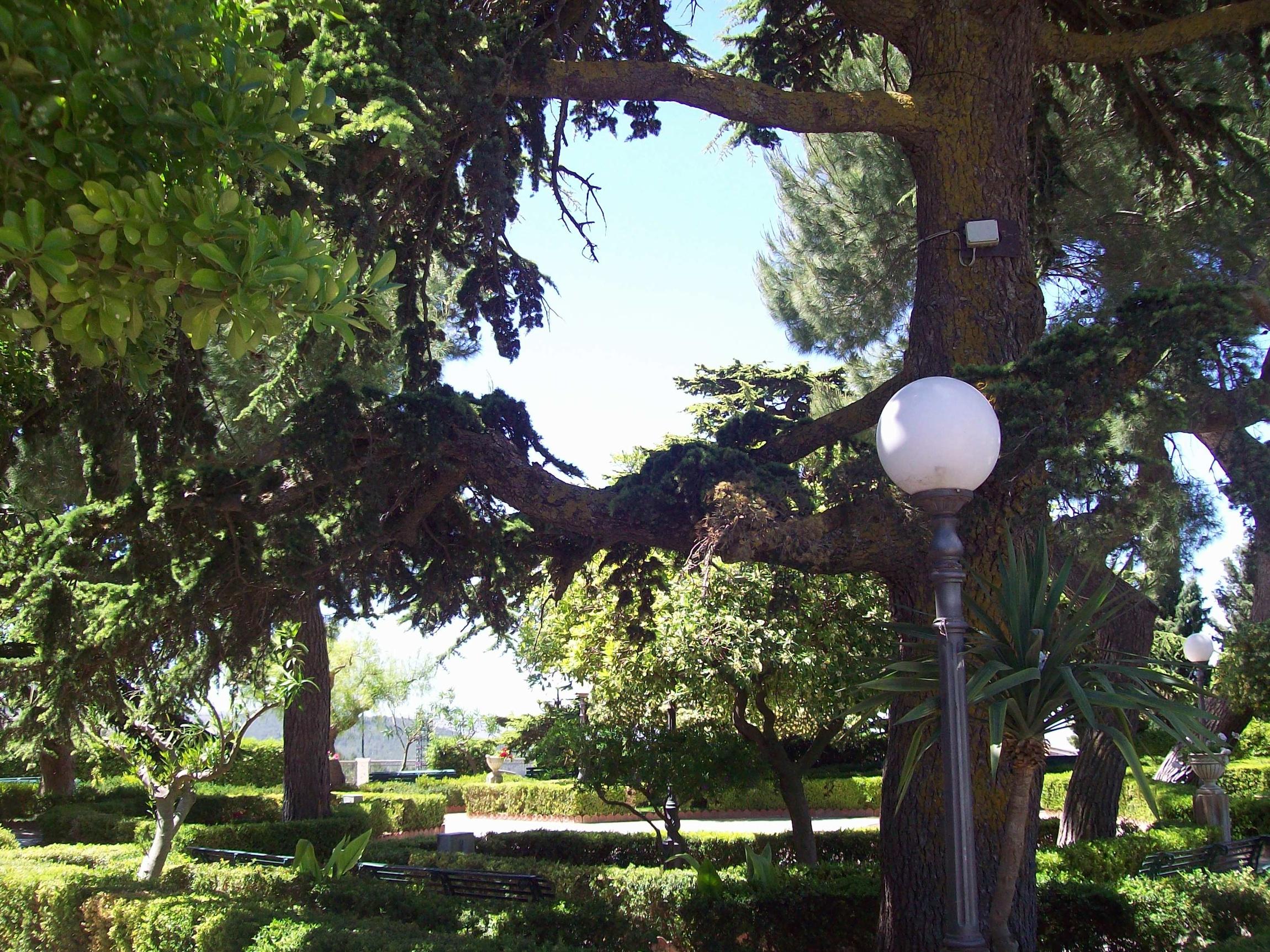 A chiaramonte ci si sposa in giardino attualit for Torrisi arredi giardino catania