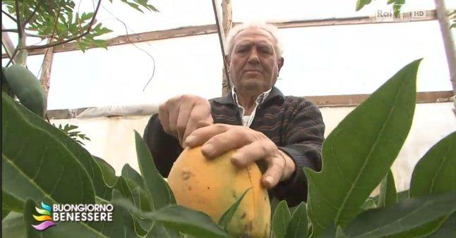 https://www.ragusanews.com/resizer/resize.php?url=https://www.ragusanews.com//immagini_articoli/01-06-2014/1401656115-bartolo-arrabito-l-uomo-della-papaya-intervistato-in-rai.jpg&size=956x500c0