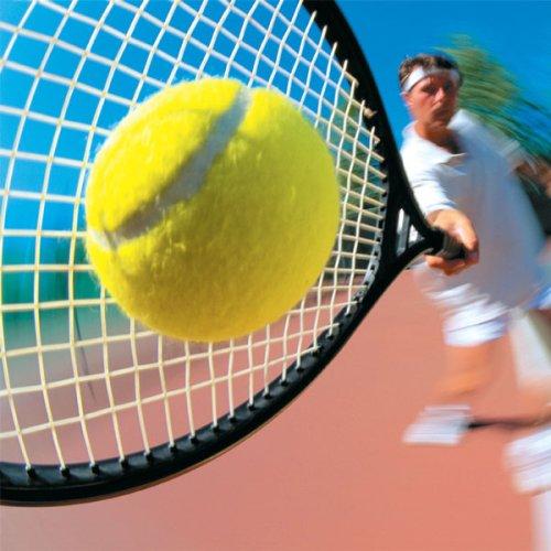 https://www.ragusanews.com/resizer/resize.php?url=https://www.ragusanews.com//immagini_articoli/01-07-2012/1396121833-tennis-scicli-ospita-la-27esima-prova-del-circuito-regionale.jpg&size=500x500c0