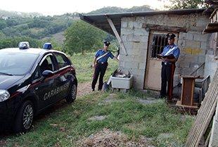 https://www.ragusanews.com/resizer/resize.php?url=https://www.ragusanews.com//immagini_articoli/01-08-2012/1396121713-trovato-a-ragusa-l-omicida-di-san-leucio-del-sannio.jpg&size=742x500c0