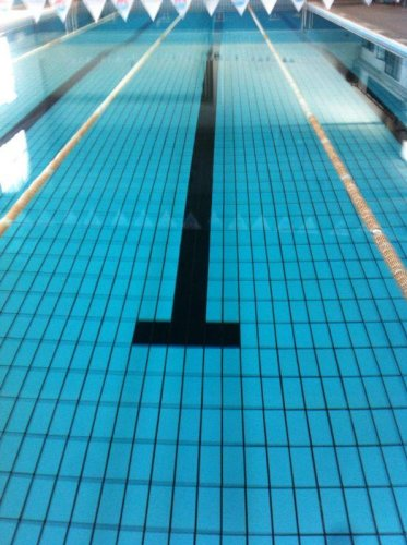 https://www.ragusanews.com/resizer/resize.php?url=https://www.ragusanews.com//immagini_articoli/02-11-2013/1396118762-piscina-comunale-le-colpe-dellintorbidamento.jpg&size=373x500c0
