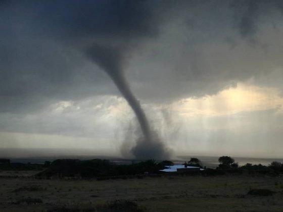 https://www.ragusanews.com/resizer/resize.php?url=https://www.ragusanews.com//immagini_articoli/05-08-2018/1533474924-1-tornado-semina-panico-pantelleria.jpg&size=667x500c0