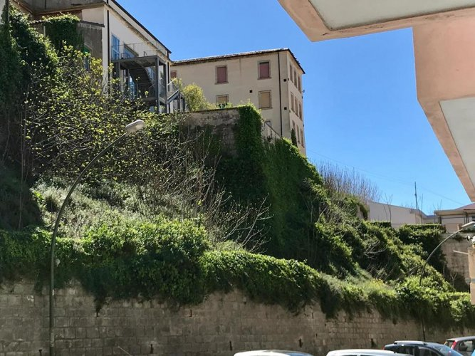 https://www.ragusanews.com/resizer/resize.php?url=https://www.ragusanews.com//immagini_articoli/06-04-2018/1523021160-9-giungla-sterpaglie-corso-kennedy-manca-solo-tarzan-foto.jpg&size=667x500c0