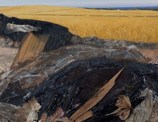 https://www.ragusanews.com/resizer/resize.php?url=https://www.ragusanews.com//immagini_articoli/07-05-2015/1430988529-0-la-bellezza-di-un-campo-di-grano-salvera-la-terra.jpg&size=645x500c0