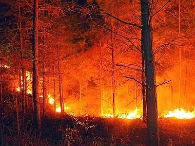https://www.ragusanews.com/resizer/resize.php?url=https://www.ragusanews.com//immagini_articoli/07-08-2014/1407441480-0-incendio-a-casasia.jpg&size=667x500c0