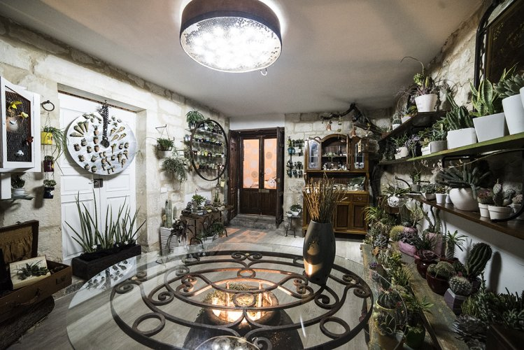 https://www.ragusanews.com/resizer/resize.php?url=https://www.ragusanews.com//immagini_articoli/08-04-2015/1428489559-1-la-sicilia-e--un-giardino-delle-delizie.jpg&size=749x500c0