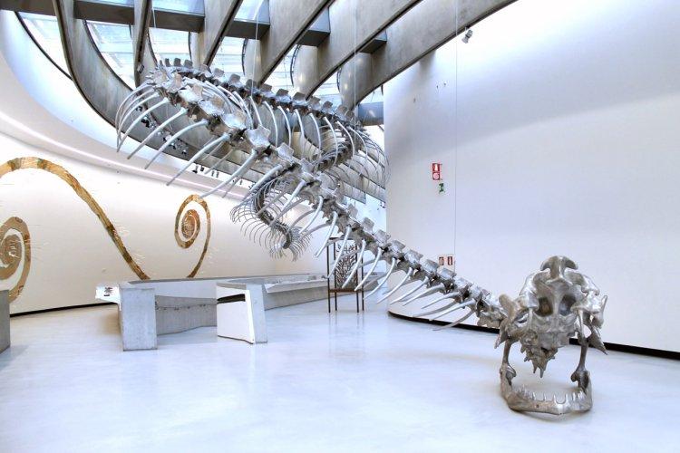 https://www.ragusanews.com/resizer/resize.php?url=https://www.ragusanews.com//immagini_articoli/10-05-2015/1431258454-2-sulle-tracce-del-serpente-al-maxxi-di-roma.jpg&size=750x500c0