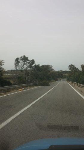 https://www.ragusanews.com/resizer/resize.php?url=https://www.ragusanews.com//immagini_articoli/14-04-2018/1523694620-2-forti-raffiche-vento-alberi-spezzati-sulle-strade-provincia.jpg&size=281x500c0