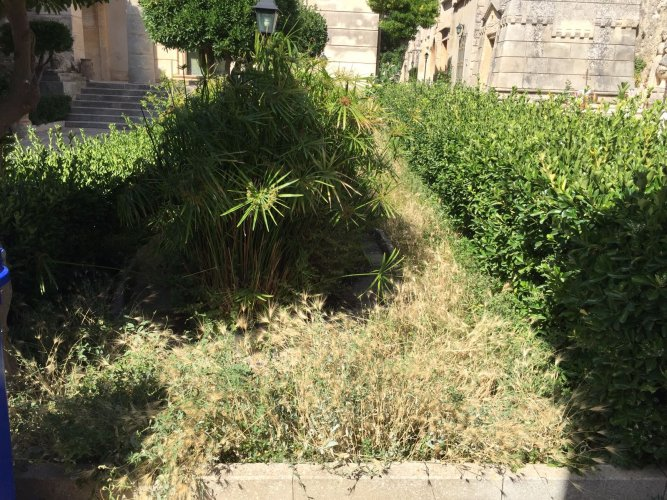 https://www.ragusanews.com/resizer/resize.php?url=https://www.ragusanews.com//immagini_articoli/14-07-2018/1531558224-2-chiaramonte-cimitero-sterpaglie.jpg&size=667x500c0