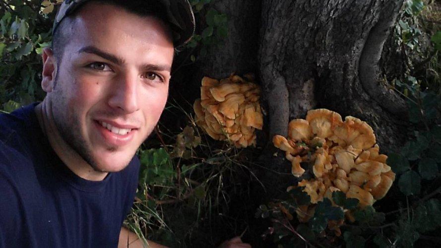 https://www.ragusanews.com/resizer/resize.php?url=https://www.ragusanews.com//immagini_articoli/14-09-2015/1442215753-0-un-fungo-di-carrubo-di-tre-chili-e-mezzo.jpg&size=889x500c0