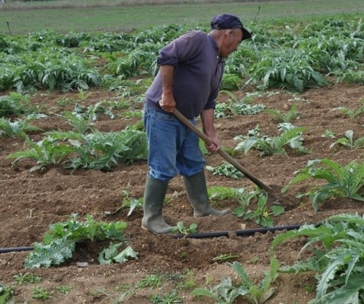 https://www.ragusanews.com/resizer/resize.php?url=https://www.ragusanews.com//immagini_articoli/15-10-2014/1413377527-0-rapinato-agricoltore.jpg&size=598x500c0
